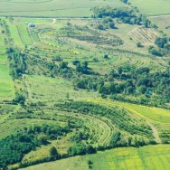 Mark Shepard author restoration agriculture
