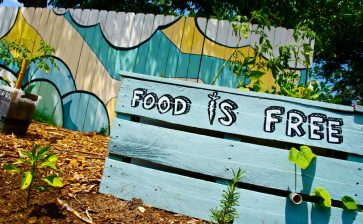 Food Is Free Project
