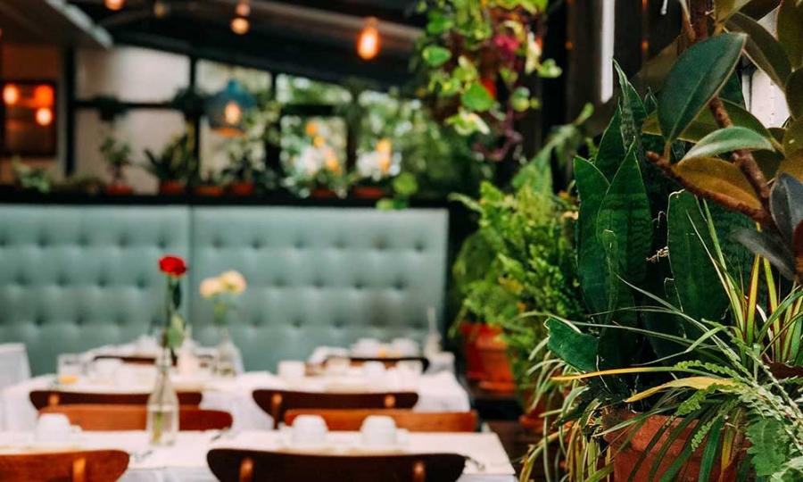 restaurant leftovers in europe