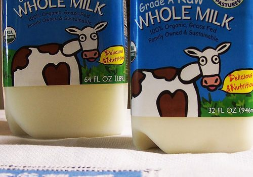 Raw Milk: Interview with Mark McAfee