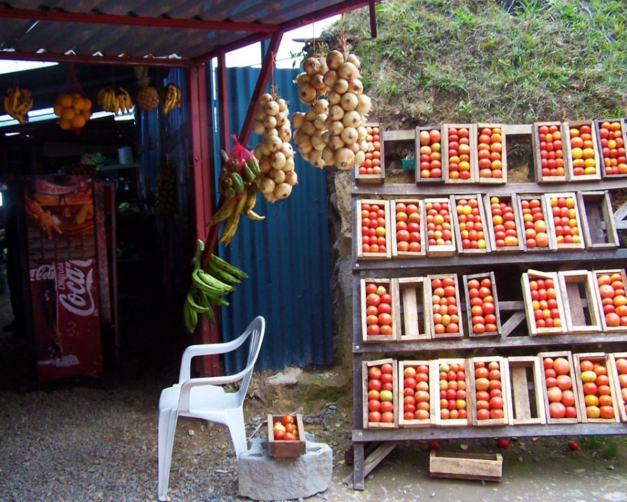 Defining the Local Foodshed