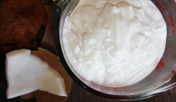 How to Make Yogurt From Fresh Whole Raw Coconuts